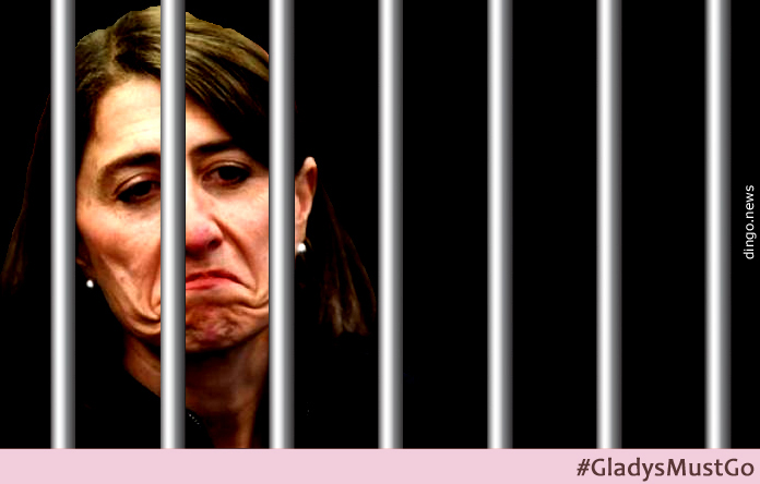 NSW Premier Gladys Berejiklian should be in prison