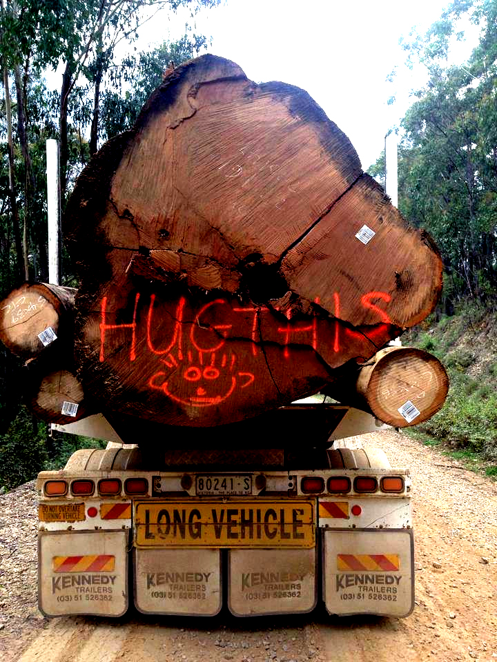 The Year in Review: Victoria's Very Normal Timber Industry – Kinglake Friends of the Forest